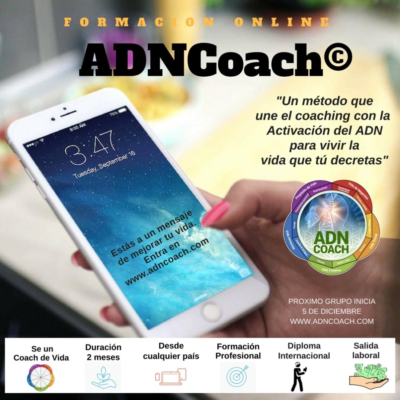 ADNCOACH (2).jpg